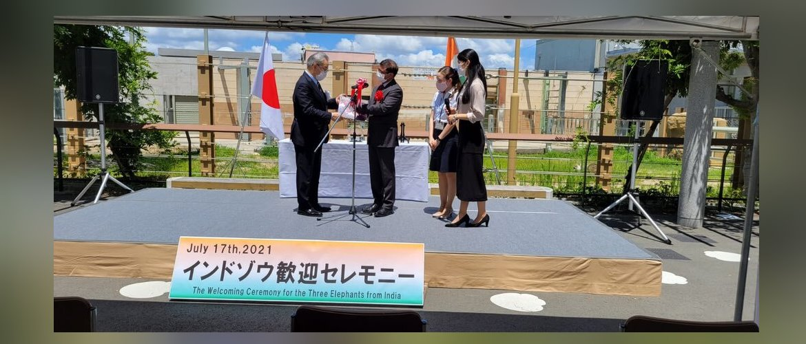 Ambassador attended the welcome ceremony for elephants Drona(10), Champaka(08) and Bhavani(06) at the Toyohashi Zoo and Botanical Park. July 17,2021
